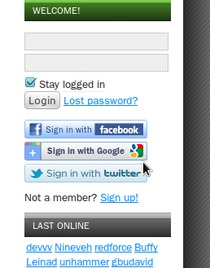 2. From then – if you're once logged out – use the third party sign-in providers